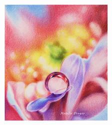 Rainbow by Acacia13