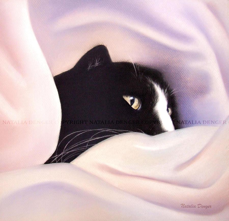 His hidden spot by Acacia13