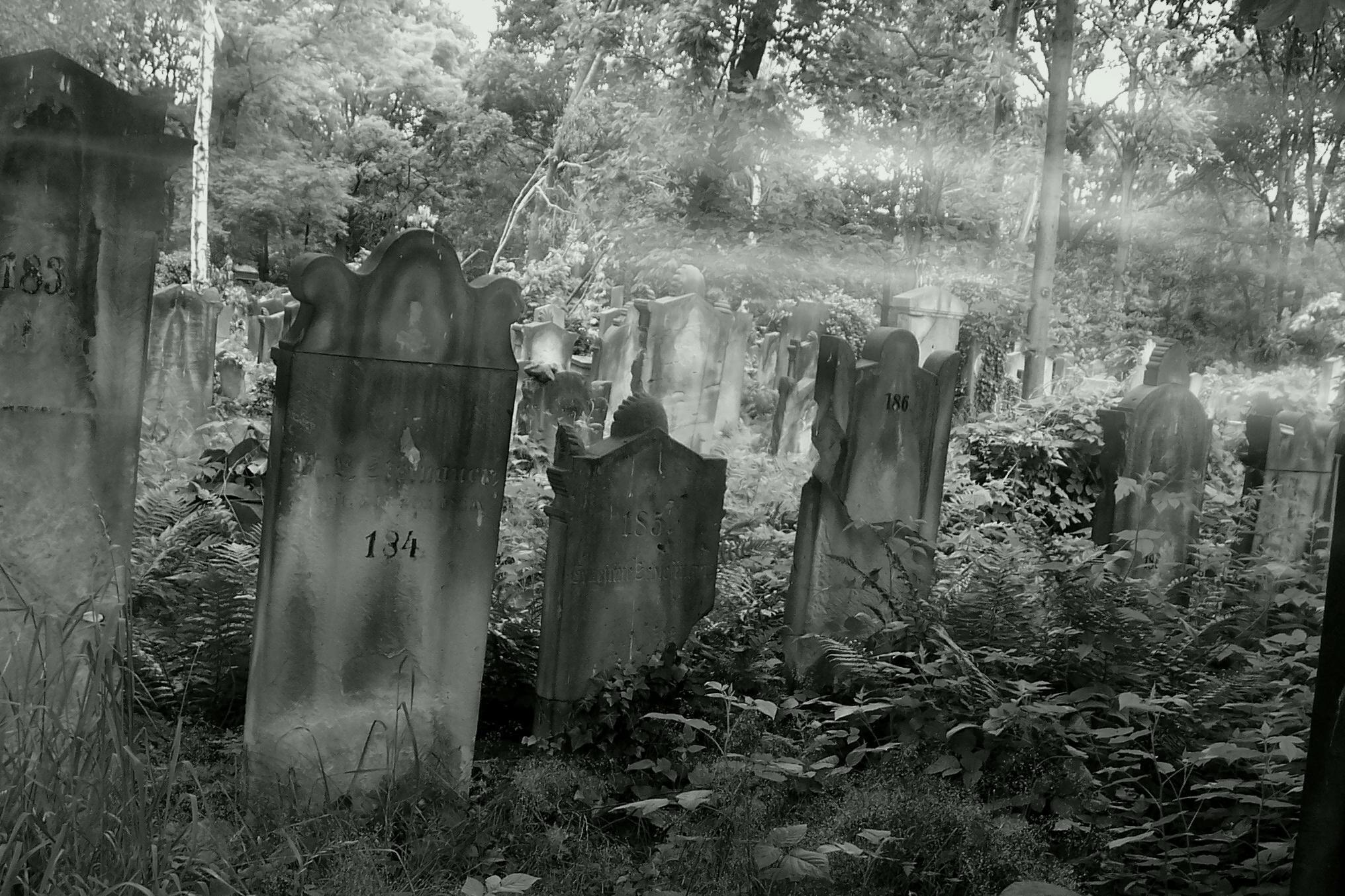 http://fc00.deviantart.net/fs8/i/2005/276/5/5/cemetery_by_Agnolia.jpg