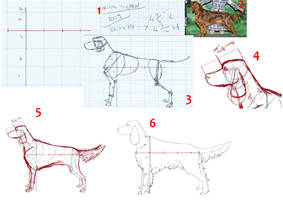 A snippet of how i draw dogs by ValentineKennel
