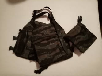 Selfmade Airsoft Plate Carrier ( Tiger Stripe ) by Xenorion