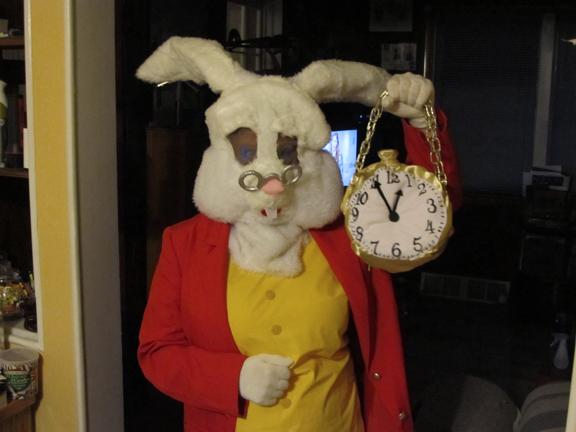 white rabbit by nixa07