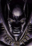 Marvel Knights: The Black Panther