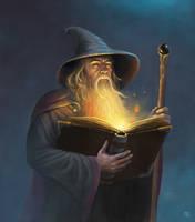 Wizard by adam-brown