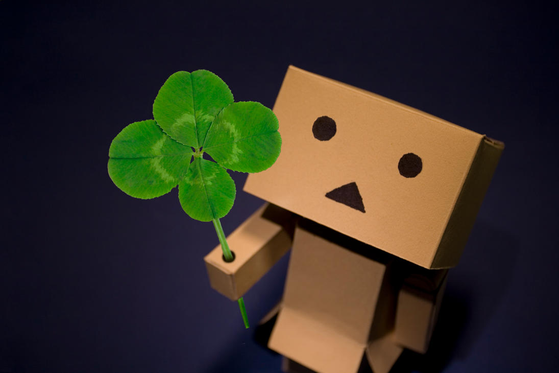 danbo four leaf clover by pg images on deviantart