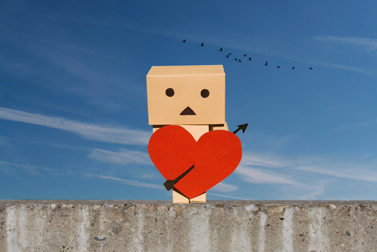 Danbo Valentine by pg-images