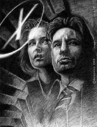 X-Files Poster by deluzzion