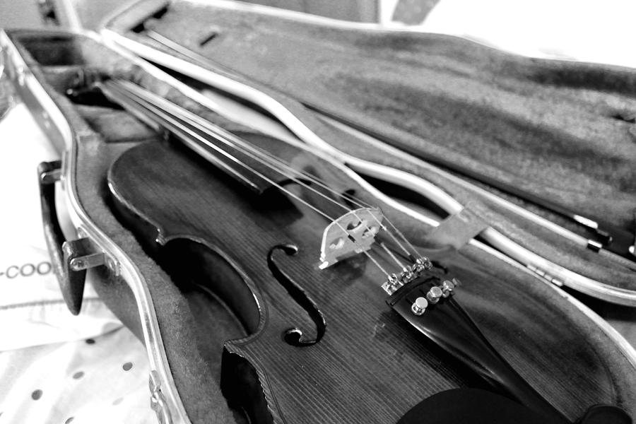 Brb gonna go learn how to play the violin  by simplesimpler