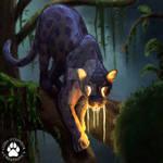 Day 2. Jaguar