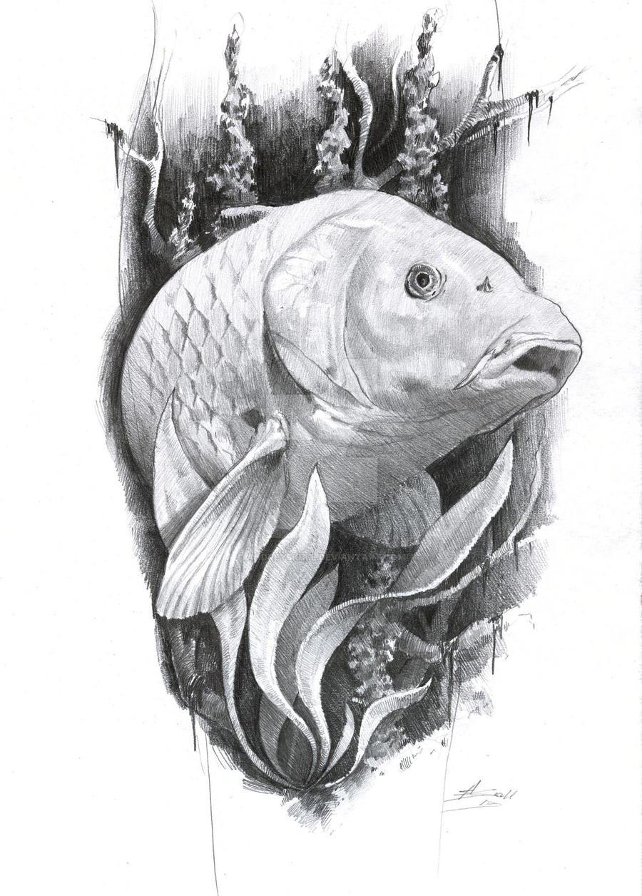 carp tattoo by AndreySkull on DeviantArt