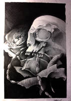 skull and rosses by AndreySkull