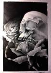 skull and rosses