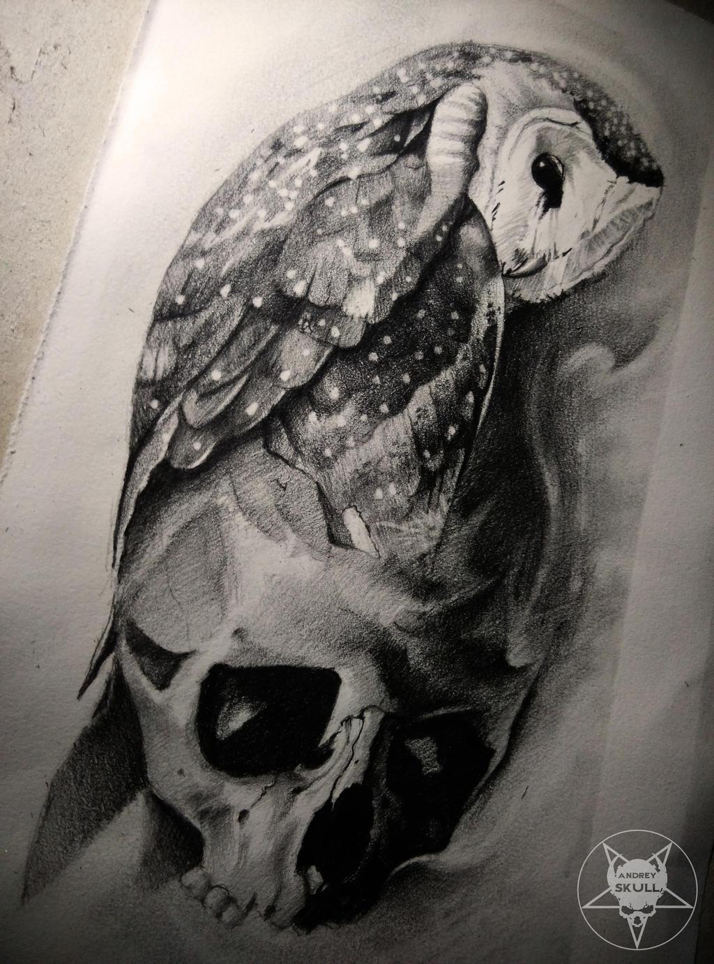 owl by AndreySkull on DeviantArt - photo#5