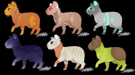 Capybara adoptables