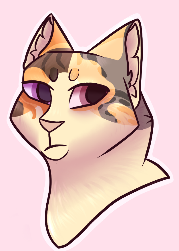 Calico cat by saeflin