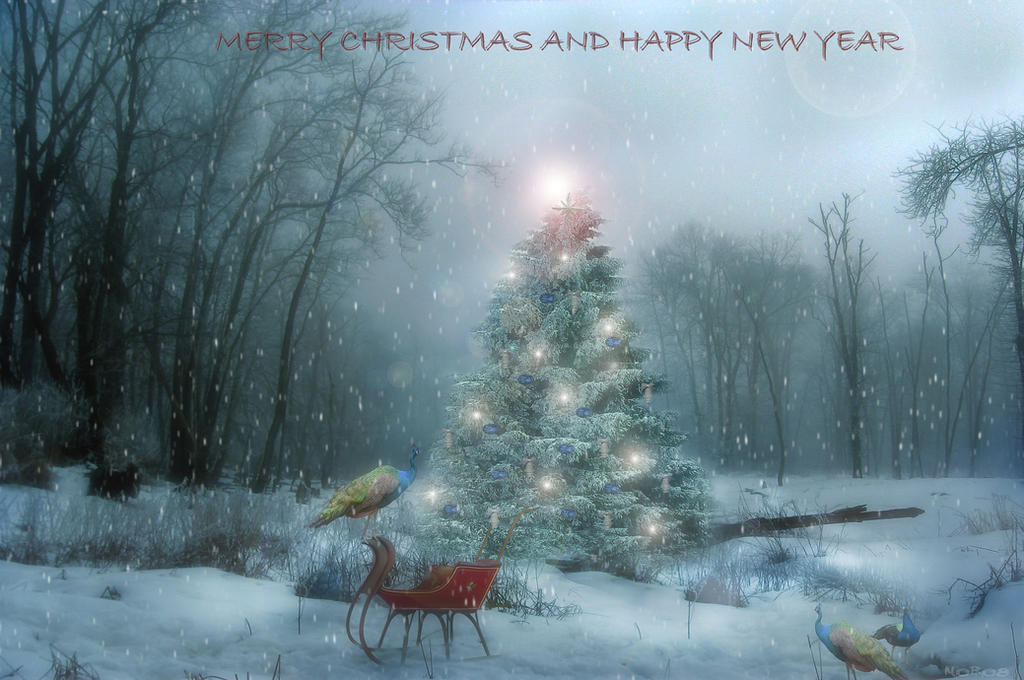 Merry Christmas and Happy new Year by noro8