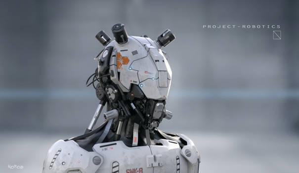 Project Robotics