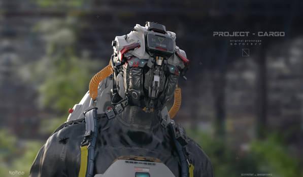Project-Cargo II