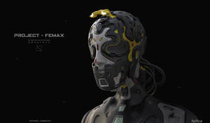 Project - Femax