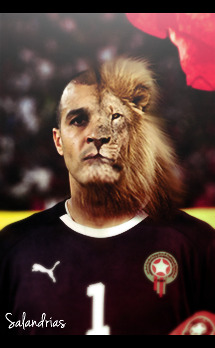 Nadir el MYaGHri THE LION by salandrias