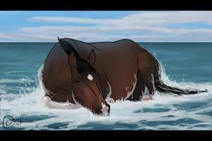 Beach Nap | Vaquero by Oisyz