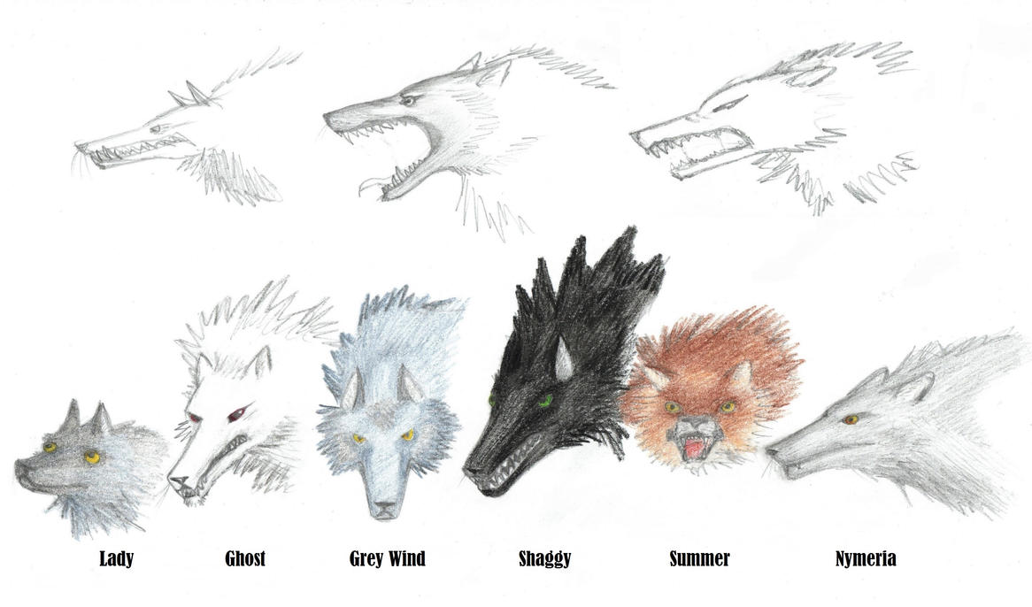 Desktop Background Bird Crow Direwolf Drawing Game Of Thrones Song How To  Draw Wolf Link From