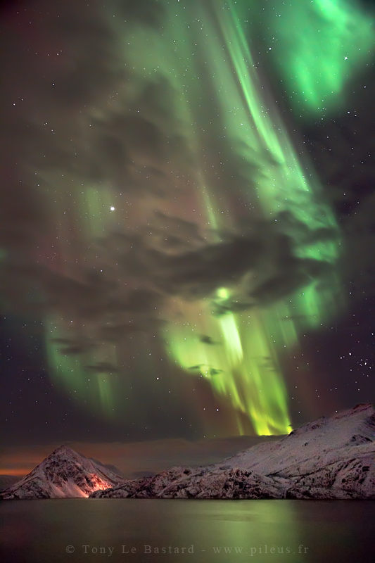 Northern lights - Shower by TonyLeBastard