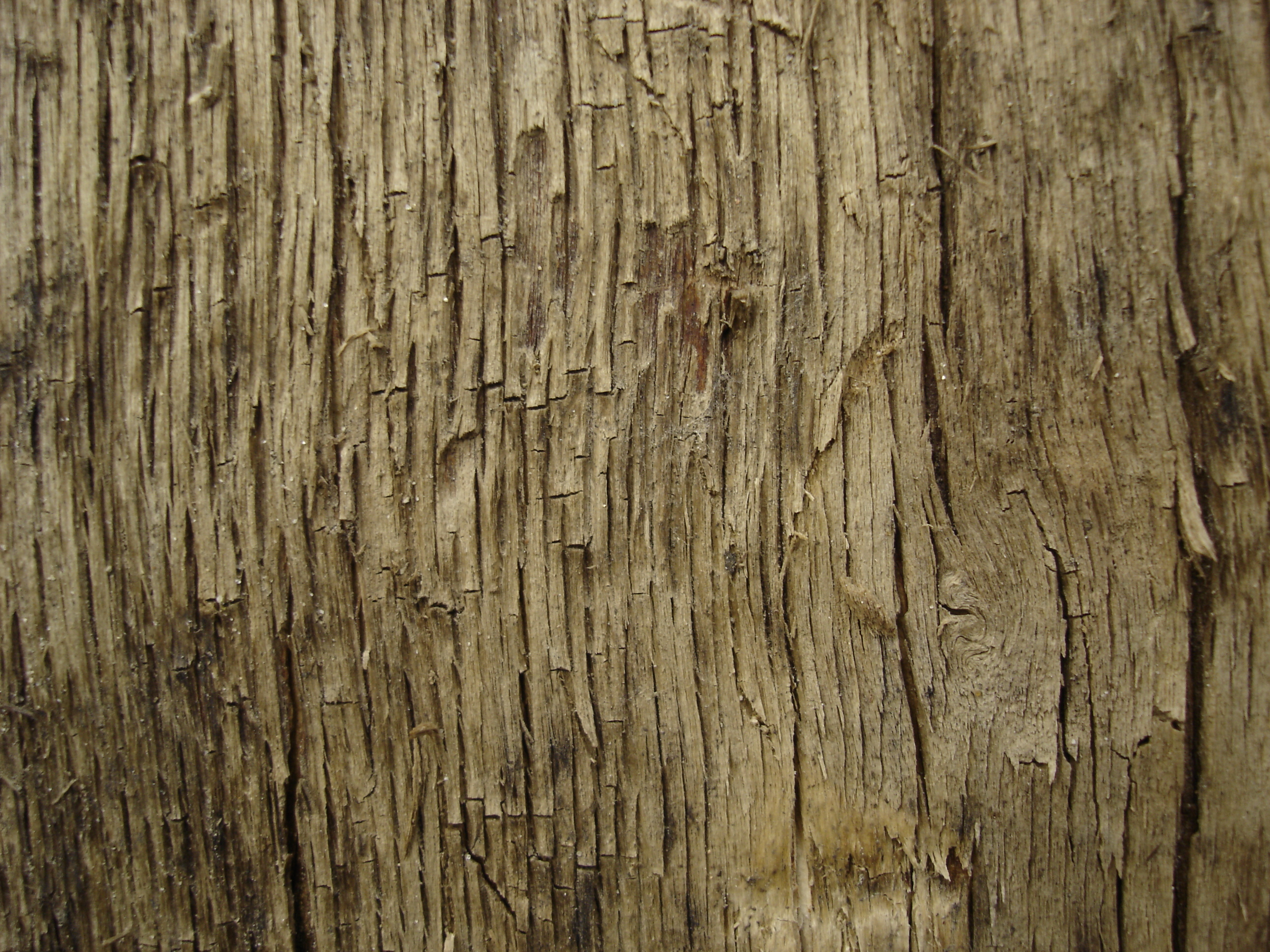 Tree_texture___11_by_LunaNYXstock Wood Christmas Tree
