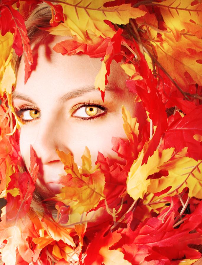 Fall by erinshortridge