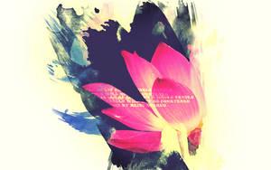 Lotus paper by Cazilu