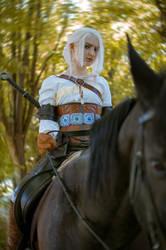 Ciri and Kelpie- The Witcher 3 by KUMIcosplay