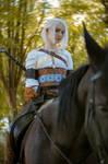 Ciri and Kelpie- The Witcher 3