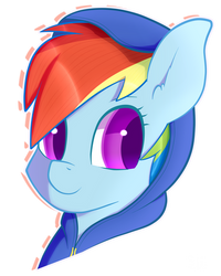 Dashie with a hoodie by Silshadnic