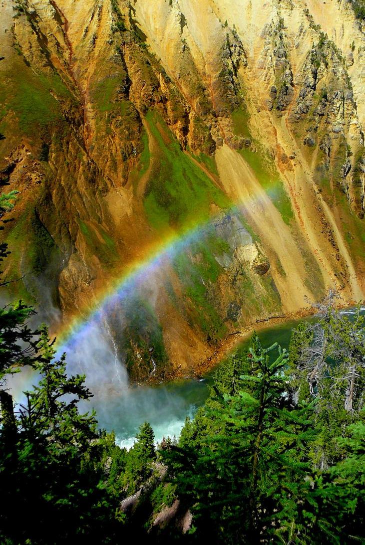 Rainbow by n2950895