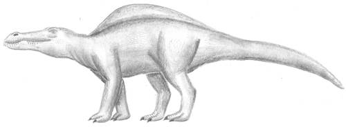 Quadrupedal Spinosaurid