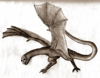 Dream Extradimensional Dragon by ZaubererbruderASP