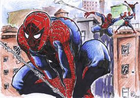 Spiderman, oh Spiderman...