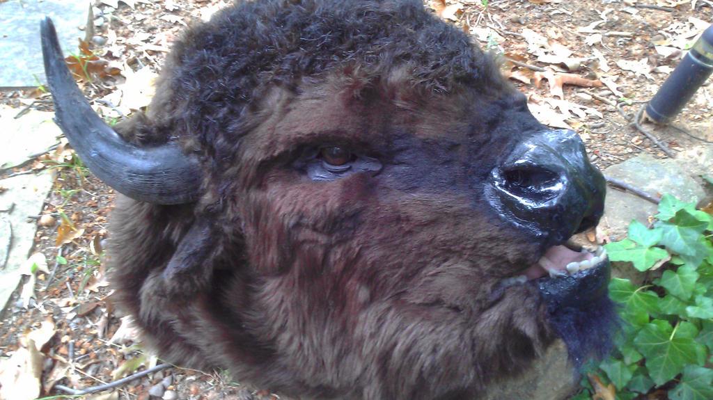 Bison mask pic 1 by Thundolis
