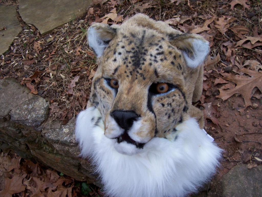 cheetah mask by thundolis on deviantart
