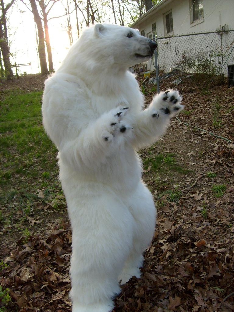 Aurora polar bear by Thundolis