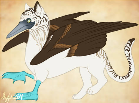 Gryphon- Blue-footed Booby