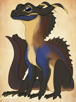 Sailfin Lizard Dragon