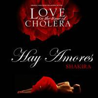 Shakira - Hay Amores by antoniomr