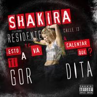 Shakira feat. Residente Calle 13 - Gordita by antoniomr