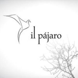 ilpajaro's Profile Picture