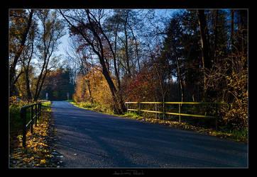 Autumn Light by AndreasResch