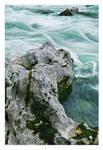 Wild Water - 02