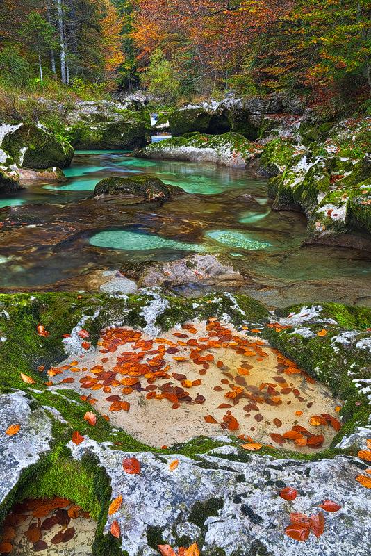Triglav - Mostnica Leaves by AndreasResch