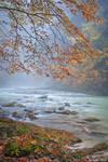 Vintgar Gorge in the Rain