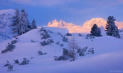Winter Goodbye by AndreasResch